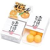 『 お世話になりました 』 退職 挨拶 お菓子 メッセージ マルカワガム 24個入 (オレンジ味)