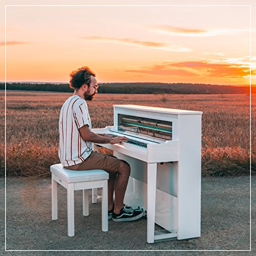 Shawn Mendes The Piano Tribute Medley: Theres Nothing Holdin Me Back / Mercy / Youth / In My Blood / Treat You Better / Lost In Japan