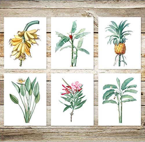 6 Beautiful Vintage Tropical Hawaiian Prints 8x10 Hand Drawn Pineapple Banana Tree Art Print Set