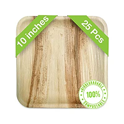"""Palm Leaf Plates Set 10""""  25 Pack Heavy Duty Eco friendly Disposable Dinner Plates   Biodegradable & Compostable   Premium Quality Tableware Ideal For Wedding, Party, Camping & More   Feast Green"""