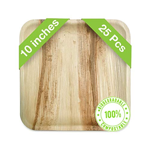 Palm Leaf Plates Set 10