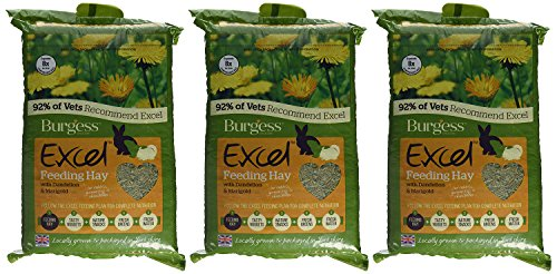 Burgess Excel Feeding Hay with Dandelion and Marigold 1kg (Pack of 3) 6