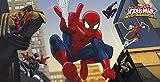Kunststoff Wand-Dekoration mit coolem Ultimate Spiderman