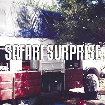 Safari Surprise