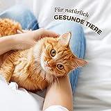 AniForte Milben Stop Spray 100 ml – versch. Größen – Naturprodukt für Hunde, Katzen & Pferde - 4
