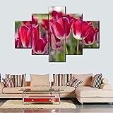 Snoevpar Cuadro sobre Lienzo - 5 Piezas - Impresión En Lienzo - Arte De Pared De Lona De 5 Paneles Grandes para Decoración del Hogar Flores Coloridas Pintura Tulipanes Rojos Imagen Naturaleza Muerta