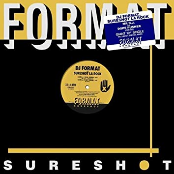 Mr DJ (feat. Sureshot La Rock)