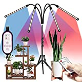 Dimmable Grow Lights with Stand for Indoor Plants, THCL 4 Head 80 LED Full Spectrum Floor Plant Light Adjustable 21-62 Inch, Auto On/Off 4/8/12H Timer & 3 Modes and Adjustable Goosneck