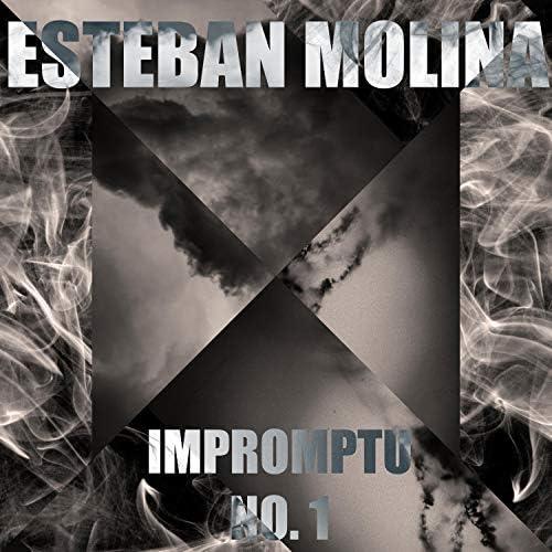 Esteban Molina