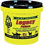 best joint supplement for older horses