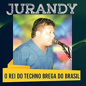 O Rei do Techno Brega do Brasil
