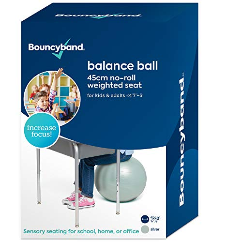 Balance Ball  NoRoll Weighted Seat is a Flexible Chair for School Office or Home Small Silver