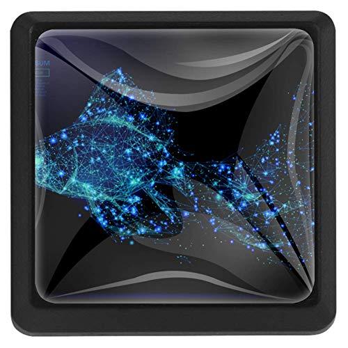 Schubladengriff, isoliert, Fisch, auf dunklem Hintergrund, Schubladenknauf Zuggriff aus Kristallglas, für Schrank, Schubladen, Schubladen, mit Schrauben, für Zuhause und Büro, Schrank, 3 Stück