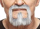 Mustaches Grauer Henriquatre mit weißr fälschen, selbstklebend Bart