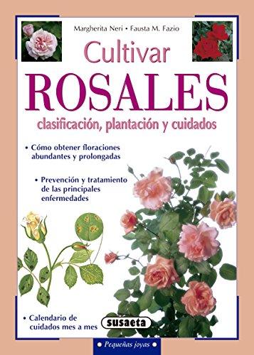 Cultivar rosales, clasificación, plantación y cuidados (Pequeñas ...