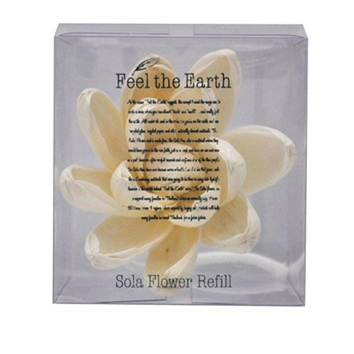 屋内でインテリア休みFEEL THE EARTH ソラフラワー リフィル リリーマグノリア Lily Magnolia フィール ジ アース