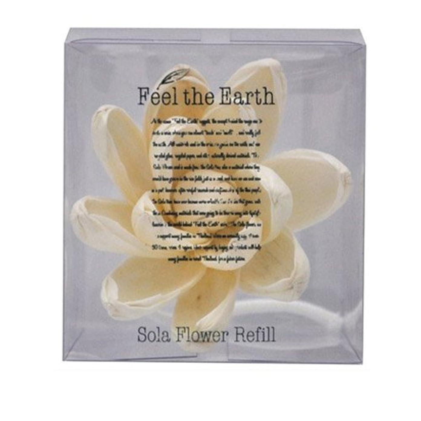 ウール南東皿FEEL THE EARTH ソラフラワー リフィル リリーマグノリア Lily Magnolia フィール ジ アース
