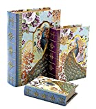 Best Book Boxes - Bellaa 28014 Decorative Book Box Peacock Antique Book Review