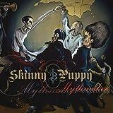 Songtexte von Skinny Puppy - Mythmaker