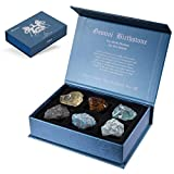 Faivykyd Gemini Crystal Gift-Zodiac Sign Stones to Complement The Birthstone-Natural Healing Crystals with Horoscope Box Set