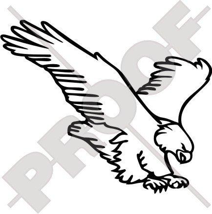Aigle Raptor Oiseau de Proie 17 cm (bord) Bumper Sticker en vinyle, en – Choix de 22 couleurs