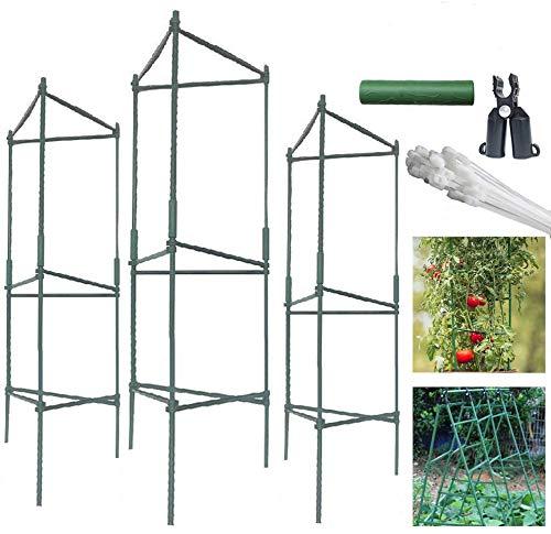 Jaulas de jardín de tomate de 4 pies, 3 unidades, enrejado de vegetales, ensamblado con 4 horquillas en A, para plantas escaladoras verticales, verduras, flores, frutas, vid (4 pies, 3 unidades)