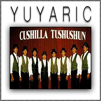 Cushilla Tushushun