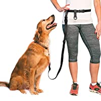 The Buddy System Made in USA Adjustable Hands Free Leash, Great for Running, Regular Dog System, Regular, Black by The Buddy System