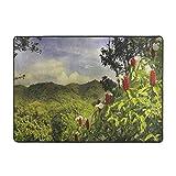 Alfombra de área con estampado de bosques, paisajes rurales Costa Rica campiña verde trópico acentos botánicos, 6.5 x 9 pies alfombras para salón dormitorio comedor