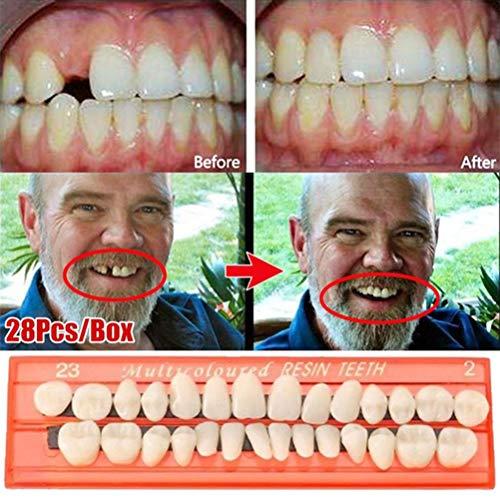 Jourbon Zahnprothesen 28 Teile/Satz Zahnersatz Zahnpflegesets Harz Zähne Modell Durable Prothesen Universal, Schimmel lehren