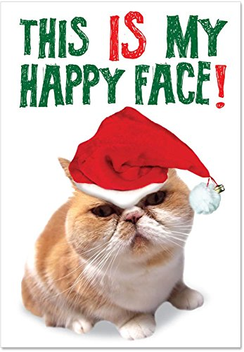 5940 Happy Face Naughty Humor Christmas Greeting Card with Envelope