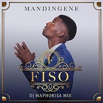 Mandingene (DJ Maphorisa Remix)