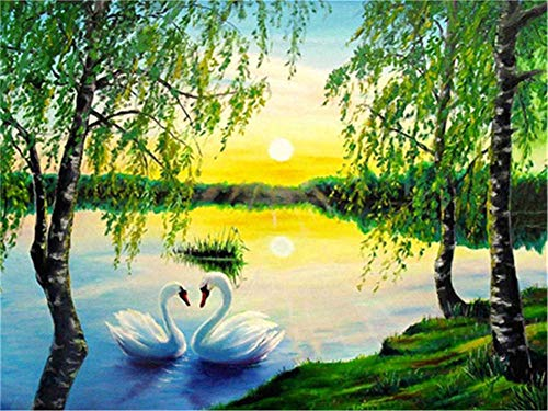 DIY 5D Diamond Painting Kits Full Drill,Crystal Rhinestone Cross Stitch Diamond Painting Adults/Kids Mosaic Pictures Embroidery Art Craft for Home Wall Decor(River Swan 50x60cm/20x24in Round Drill)