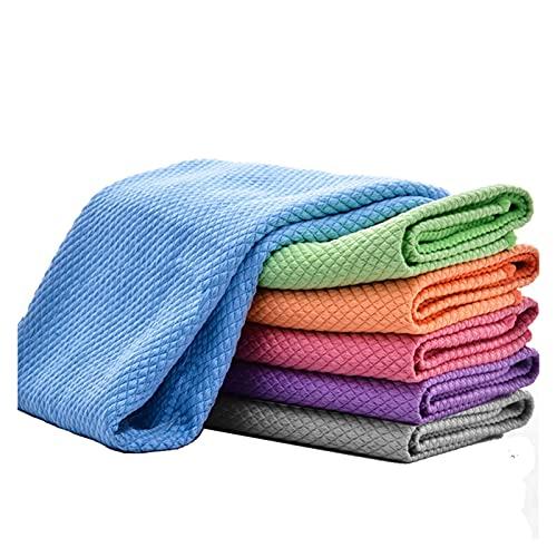 LIANGJIN 10/5 unids Limpieza de Microfibra Toalla Coche Detallando Toallas de Limpieza Empeneable Ventana de Coche Limpieza Toallitas Secado automático Lavar Trapos (Color : 10Pcs Blue)