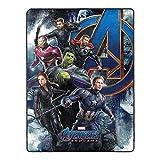 Marvel's Avengers Endgame, 'Vengeance Awaits' Oversized Silk Touch Throw Blanket, 60' x 80', Multi Color