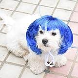 Disfraz de mascota de Sotoboo. Peluca sexy para mascotas, pelo sintético para perro, gato, color azul, pelo corto/largo de oro, disfraz de fiesta