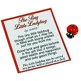 Ganz The Tiny Little Lady Bug Poem Card and Small Plastic Ladybug (1 Card and 1 Ladybug)