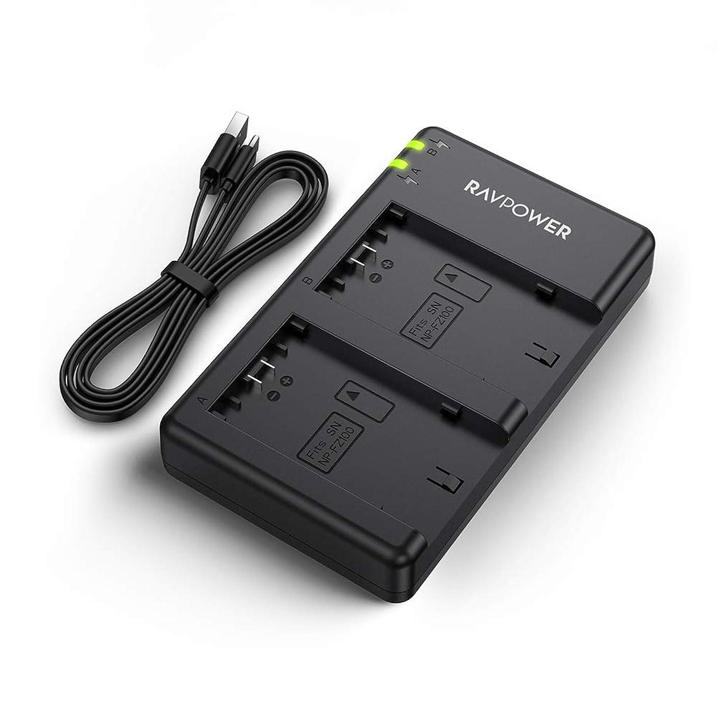 相反するいつか荒廃するRAVPower バッテリーパック NP-FZ100 充電器 (USB 急速充電) NP-FZ100 など対応 RP-BC028