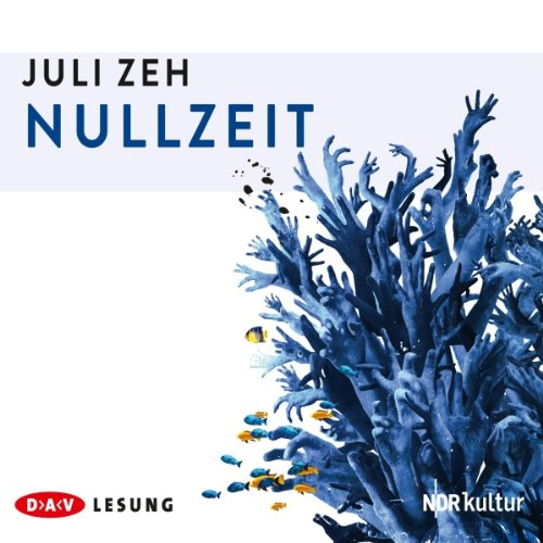 Nullzeit audiobook cover art
