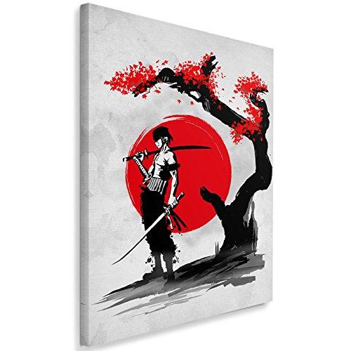 Feeby. Cuadro en Lienzo - 1 Parte - 50x70 cm, Imagen impresión Pintura decoración Cuadros de una Pieza, Swordsman Pirate - DDJVigo, Anime, Rojo