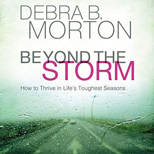 Beyond the Storm audiobook cover art