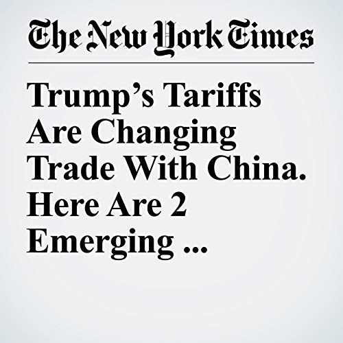 Trump's Tariffs Are Changing Trade With China. Here Are 2 Emerging Endgames. copertina