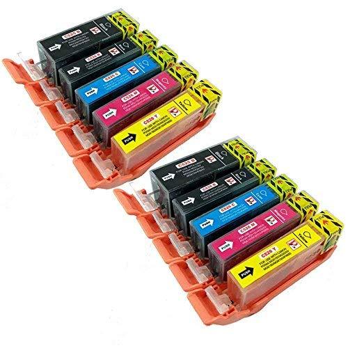 10 PGI-525 CLI-526 Cartucce di inchiostro con chip compatibili per CANON PIXMA MG5250 MG6250 MG5350 MG6150 MG5200 IX6550 MG5150 IP4850 iP4950 MG6100 MG8150 MG8250 MX895 iP4800 MX715 MG5300 IX6250 MX882 iP4840 MG6120 MG6220 MG8220 MG5100 MG5120 MG8120 MG8170 MX885 stampante. (2x grande nero + 2x nero + 2x ciano + 2x magenta + 2x giallo)