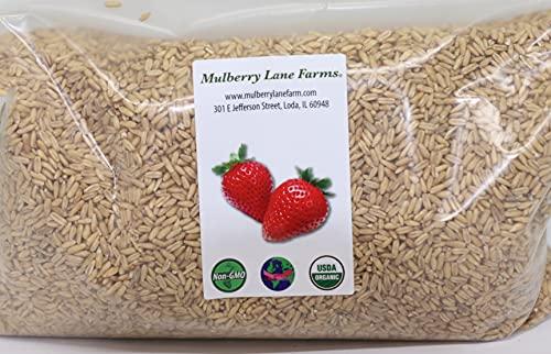 Whole Oats 5 Pounds Hulled, Groats, USDA Certified Organic Non-GMO Bulk, Mulberry Lane Farms