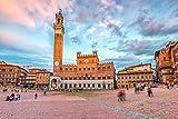Siena, Italy - Piazza del Campo 9010668 (12x18 Art Print, Wall Decor Travel Poster)