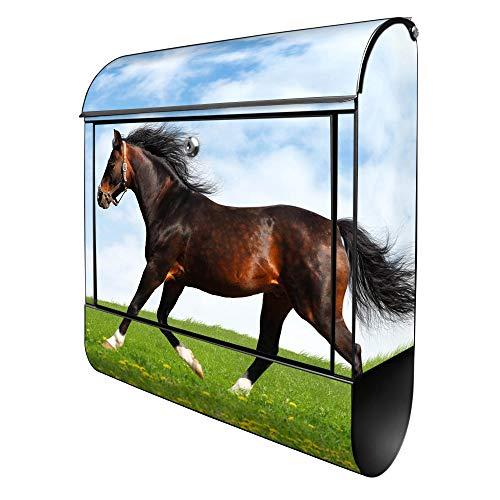 Banjado Design Briefkasten mit Motiv Pferd | Stahl pulverbeschichtet mit Zeitungsrolle | Größe 39x47x14cm, 2 Schlüssel, A4 Einwurf, inkl. Montagematerial