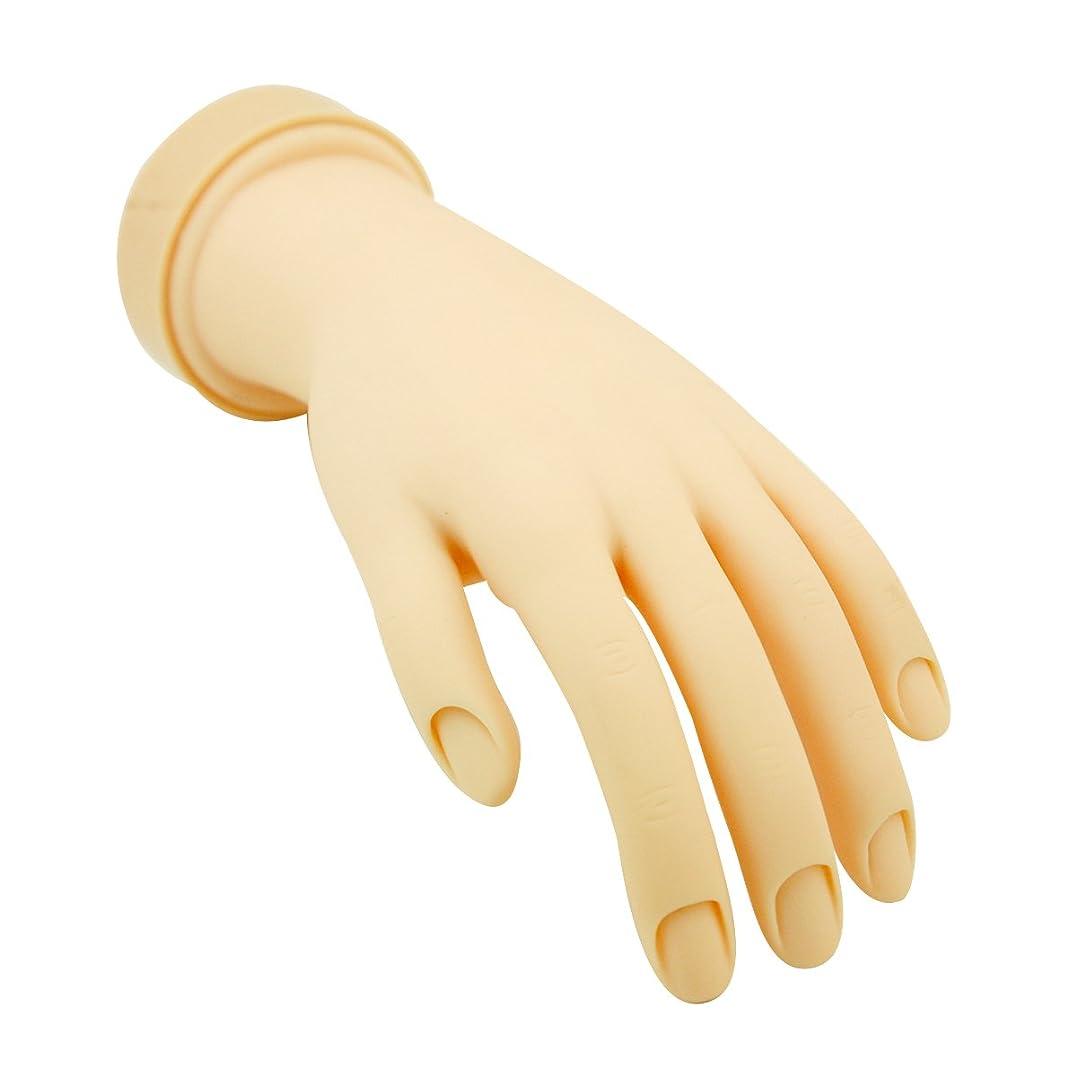 ベーリング海峡デザイナーショッピングセンタートレーニングハンド (ネイル用) 左手 [ 練習用マネキン 手 指 ハンドマネキン マネキン 施術用 トレーニング ]