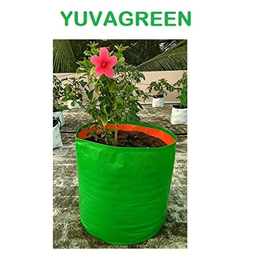 YUVAGREEN Terrace Gardening Leafy Vegetable Grow Bag (15x15-inch, Green) -Pack of 10