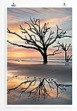 Eau Zone Home Bild - Landschaft Natur – Einsamer Baum im