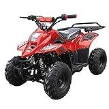 X-PRO 110cc ATV Quads Youth ATV Kids Quad ATVs 4 Wheeler (Burgundy)